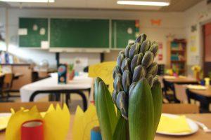 Szkoła będąca nadzieją